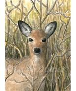 ACEO art print Deer 17 fawn from original paint... - $4.99