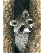 ACEO art print Raccoon 22 from original paintin... - $4.99