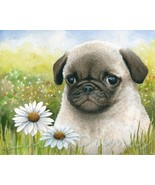 Archival Fine Art Print Dog 114 Puppy Pug Daisy... - $26.00 - $51.00