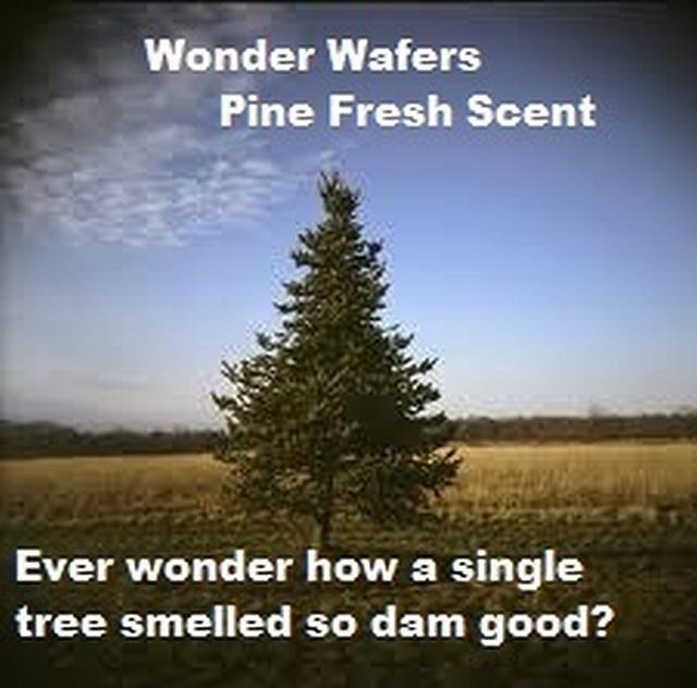 24~ Wonder Wafers~2 Dozen 19 Scents to Choose INDIVIDUALLY WRAPPED Air Freshener