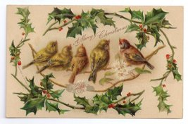 Christmas Birds Finches Framed with Holly Embossed Litho Vintage 1907 Po... - $6.69