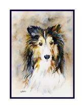 Watercolor Sheltie Note Cards, Notecards, Sheltie Print, Sheltie Dog Sta... - $15.00