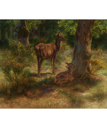 DEER AND FAWN IN THE WOODS WILDLIFE ANIMAL PAINTING BY ROSA BONHEUR REPRO - $9.41+