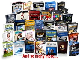 750 ebooks various niches plr, mrr, resale rights - $5.00