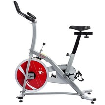 Indoor Training Exercise Bike Bicycle Gym Cycle Workout Cardio Fat Burni... - $228.31