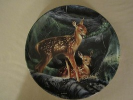 FAWN DEER collector plate KEVIN DANIEL Forest Hideaway WOODLAND INNOCENT... - $19.95