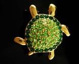 Turtle2 thumb155 crop