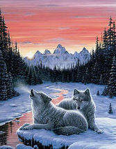 TwiLight Song WoLf Cross Stitch Pattern***LOOK*** - $4.95