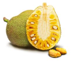 Jackfruit 4 thumb200
