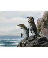 Galapagos penguins cross stitch pattern thumbtall