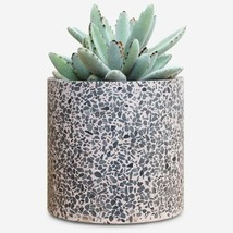 Terrazzo Flower Pot - Modern Rose Planter | Indoor Outdoor Plant Pot 6 inch - $55.00