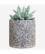 Terrazzo Flower Pot - Modern Rose Planter | Indoor Outdoor Plant Pot 6 inch - $77.76 CAD