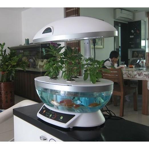 Aquaponics System Fish Tank Aquarium Planter Grow Light ...