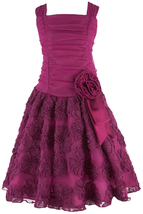 Big Girls Tween 7-16 Fuchsia Shirred Bonaz Rosette Social Party Dress