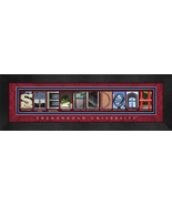 Shenandoah University Officially Licensed Framed Campus Letter Art - $39.95