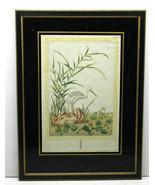 Note on Reverse:1749 Antique Possible Japanese Stork Ramunculus Aquatis ... - $125.38