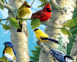 Birds Paint By Numbers Kit - $21.99+