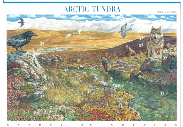 Arctic Tundra, Full Sheet of 10 x 37-Cents Postage Stamps, USA 2003, Scott 3802