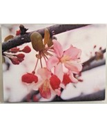 """CHERRY BLOSSOMS WALL ART CANVAS STRETCHED ON FRAME PHOTO WALL ART 9.5"""" X 7"""" - $7.95"""