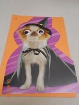 Hallmark kids XL Halloween card w/ envelope & big button moving eyes dog... - $7.43
