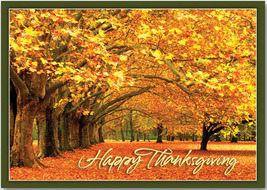 Canopy of Gold Thanksgiving Cards - $60.50+
