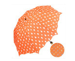 umbrella Color Changing Water Activated Windproof Princess Folding Umbrella