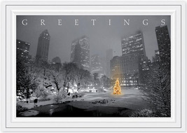 City Park Glow Holiday Cards - $60.50+