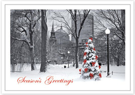 Boston Splendor Holiday Cards - $60.50+