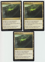 Unknown Shores x 3, NM, Oath of the Gatewatch, Common Land, Magic the Ga... - $0.77 CAD