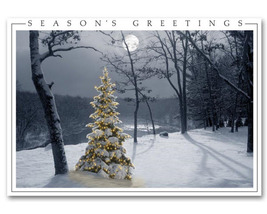 All is Bright Holiday Cards - $60.50+
