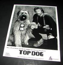 1995 Aaron Norris Movie Top Dog 8x10 Press Photo Chuck Norris - $9.99
