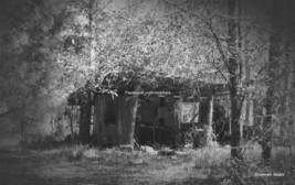 Broken Forgotten 10 x 10 Artistic Photograph Si... - $4.95