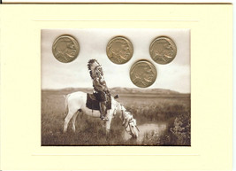 Four Buffalo Head Nickel Mini Collection with I... - $7.00