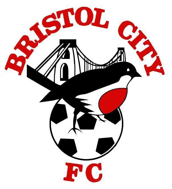 Bristol City FC crest vinyl sticker shaped contoured football soccer The Robins