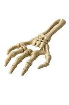 HomArt Cast Iron Skeleton Hand Hand-Held Bottle Opener - $20.10