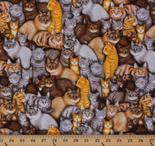 Meow Mix Cats Breeds Kittens Pets Animals Cotton Fabric Print by Yard D5... - $11.49