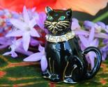 Vintage monet black cat brooch pin enamel rhinestones collar figural thumb155 crop