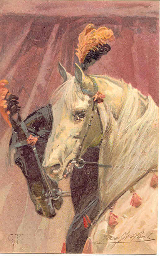 A Circus Team Paul Finkenrath of Berlin Vintage Post Card  - $8.00