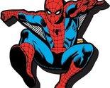 Aquarius Spiderman Jumping Chunky Magnet by Aquarius