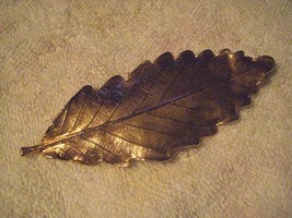 Gold toned Leaf Pin - $9.50
