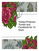 Twitter,Pinterest ,Facebook and Tumblr for 14 D... - $12.00