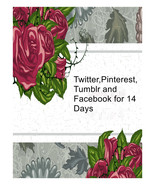 Twitter,Pinterest ,Facebook and Tumblr for 14 Days-I will pin up to 30 i... - $16.00