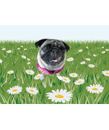 Floral Background with Ripley-Digital Clipart-Gift Card-Background-Websi... - $3.00