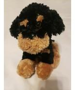 Target Circo Rottweiler Puppy Dog Plush Stuffed Animal Black Tan Sitting - $34.53