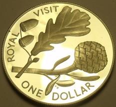Rare Silver Proof New Zealand 1981 Dollar~38k Minted~English Oak~Royal V... - $39.59