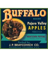 BUFFALO PAJARO VALLEY APPLES CALIFORNIA USA FRUIT CRATE LABEL CANVAS REPRODUC... - $28.91