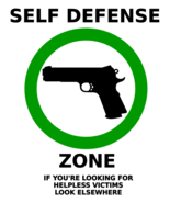 PM's Guide to Home Defense-A Self Protection Pa... - $11.95