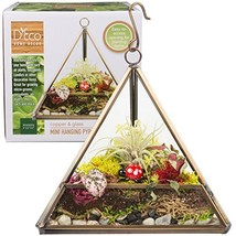 Deco Glass Geometric Terrarium, Succulent & Air Plant -Triangle Mini 5 x... - $12.74