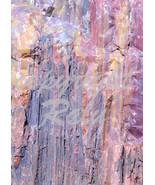Petrified Wood National Park Arizone Nature 5x7 Original Close-up Marco ... - $9.99