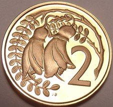 Rare Proof New Zealand 1981 2 Cents~Kowhai Leaves~Only 18,000 Minted~Fre... - $7.77